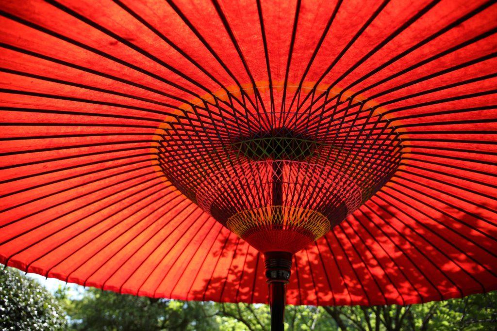 6月「水無月」はどんな月か?雨の恵みに大感謝6月の行事、イベント、暦を知ろう!